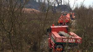 Sakaryada doğal gaz hattında patlama sonrası yangın