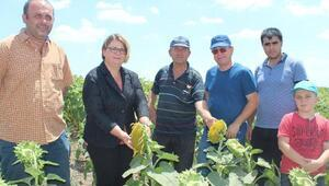 Çevre amaçlı tarım arazilerinin korunması programı sonuçları yüz güldürüyor
