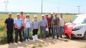 Kırklareli'nde 408 bin 800 dekar sahada süneye karşı kimyasal mücadele yapıldı